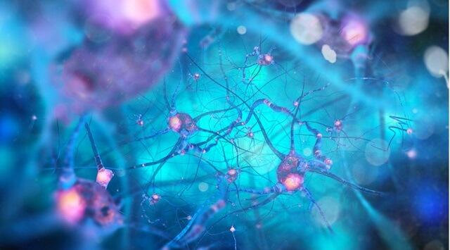Có rất nhiều nghiên cứu khoa học đang được tiến hành và thu được kết quả khả quan với phương pháp y học tái sinh có thể chữa bệnh Parkinson.