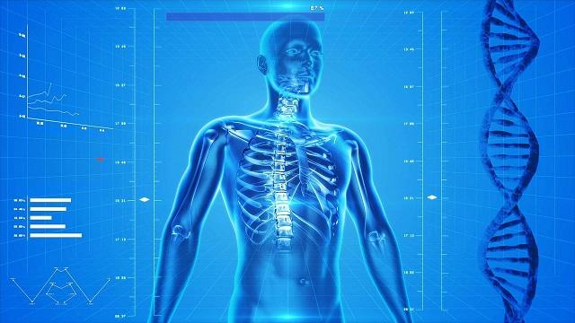 Tế bào gốc có thể tái tạo lại các mô khỏe mạnh cho hệ hô hấp vốn bị ảnh hưởng do bệnh tật hay vốn bị tàn phá Tế bào gốc có thể tái tạo lại các mô khỏe mạnh cho hệ hô hấp vốn bị ảnh hưởng do bệnh tật hay vốn bị tàn phá ở người mắc bệnh ở người mắc bệnh